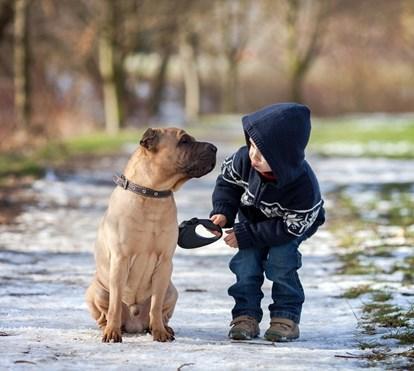Crianças que amam os seus animais de estimação