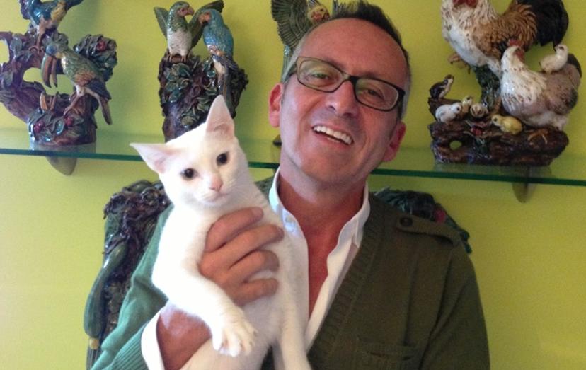 Faneca, a gata do apresentador Manuel Luís Goucha