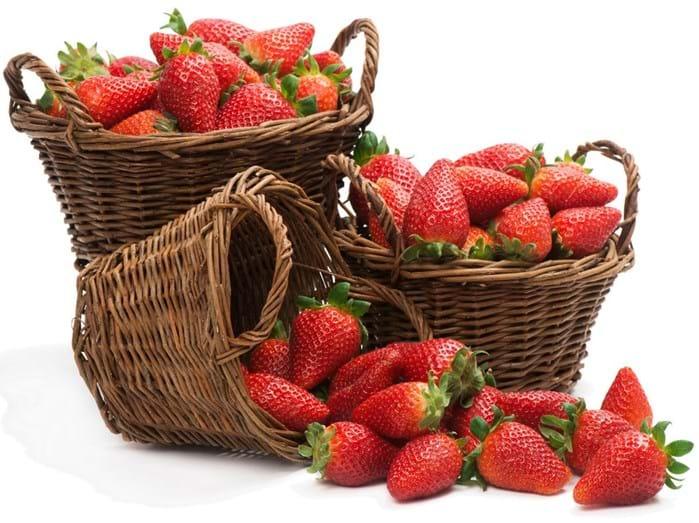 MORANGO - Com poucas calorias e rico em água e fibras, este fruto, além de ajudar na dieta, reduz risco de ataque cardíaco e dá para combiná-lo com diversos pratos