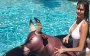 Vídeo de Sofía Vergara na piscina tona-se viral