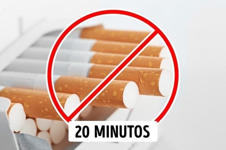 FUMAR - Fumar faz mal à saúde, ponto. Mas logo a seguir à refeição, é ainda pior. Durante a digestão, praticamente todos os sistemas do nosso corpo entram em ação. Nesse momento, a nicotina será absorvida em dobro, aumentando assim seu efeito negativo sobre o corpo. Além disso, ficou comprovado que o cigarro pode bloquear o processo de absorção de vitaminas e minerais, como cálcio e vitaminas C e D, anulando os benefícios até mesmo dos alimentos mais saudáveis. Portanto, espere cerca de 20 minutos até acender o cigarro