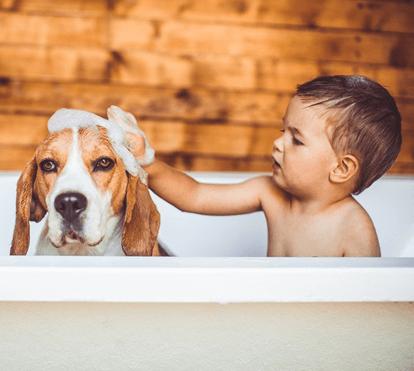 Crianças com cães têm mais autoestima