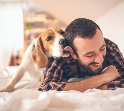 Os 10 factos sobre o seu cão que, provavelmente, não conhece