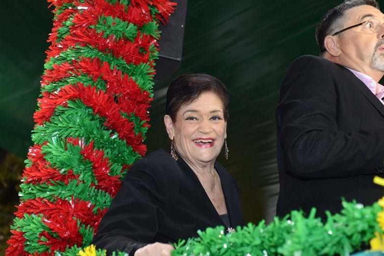 Anita Guerreiro assistiu ao desfile das marchas no camarote