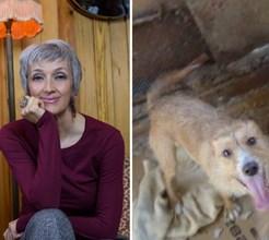 Desesperada, cantora Né Ladeiras procura dono para cachorro negligenciado