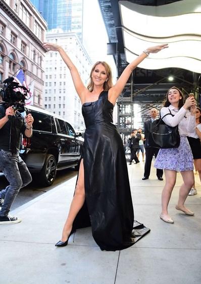Os looks de Celine Dion