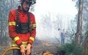 Paulo Vieira, o bombeiro que matou a sede a dois cães e se tornou herói na internet